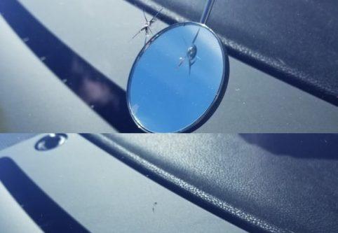 Glassworks Rock Chip Repair
